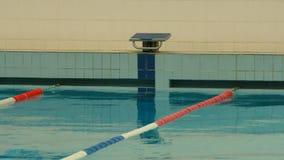Represente saltar en la piscina Imágenes de archivo libres de regalías