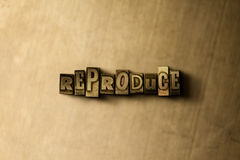REPRODUCE - close-up of grungy vintage typeset word on metal backdrop Stock Photography