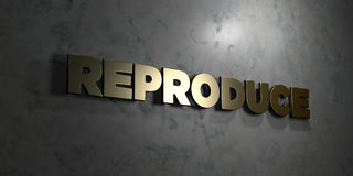Reproduce - Gold text on black background - 3D rendered royalty free stock picture Stock Photo