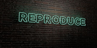 REPRODUCE -Realistic Neon Sign on Brick Wall background - 3D rendered royalty free stock image. Can be used for online banner ads and direct mailers vector illustration