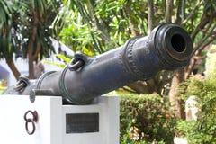 Reproducerad kanon Royaltyfri Foto