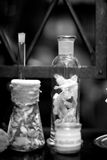 Reproduction of glass flask in medieval drugstore; monochrome Royalty Free Stock Images