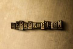 REPRODUKTION - närbild av det typsatta ordet för grungy tappning på metallbakgrunden royaltyfri illustrationer