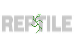 Reptiel Stock Foto's
