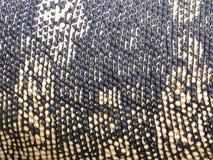 Reptiel huid Stock Afbeelding