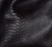 Reptiel huidachtergrond stock foto's