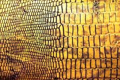 Reptiel huidtextuur/achtergrond Stock Foto's