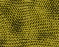 Reptiel ruwe huidachtergrond stock illustratie