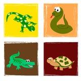 Reptielen Stock Afbeeldingen