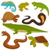 Reptielen en reptilian dierenschildpad, krokodil of kameleon en de vlakke vectorpictogrammen van de hagedisslang stock illustratie