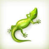 Reptil Foto de archivo