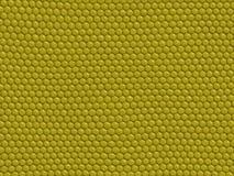 Reptilbeschaffenheit - Eidechse stock abbildung
