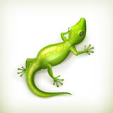 Reptile. Computer illustration on white background Stock Photo