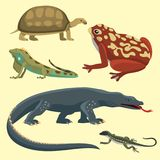 Reptile and amphibian colorful fauna vector illustration reptiloid predator reptiles animals. Royalty Free Stock Photos