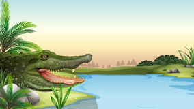 A reptile at the river. Illustration of a reptile at the river Stock Photography