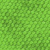 Reptile's skin texture Royalty Free Stock Photo