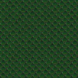 Reptile Skin [07] Stock Photos