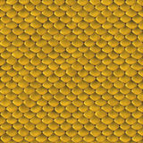 Reptile Skin [09] Royalty Free Stock Photo