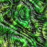 Reptile skin Royalty Free Stock Images