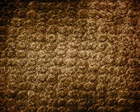 Reptile skin. Close up with soft shades Stock Photos