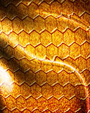Reptile skin Royalty Free Stock Photos