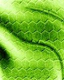 Reptile skin vector illustration