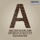 Reptile Skin Alphabet and Numbers Vector Royalty Free Stock Image