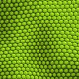 Reptile skin background Royalty Free Stock Photos