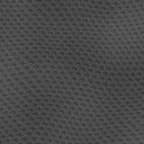 Reptile skin background Royalty Free Stock Photography