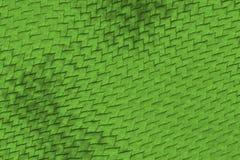 Reptile skin Royalty Free Stock Image