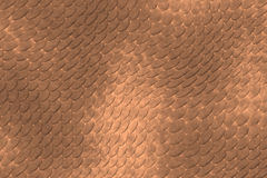Reptile skin. Image of a nice skin background royalty free illustration
