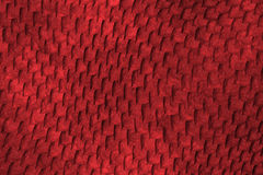 Reptile skin. Image of a nice skin background Stock Photos