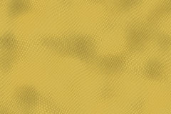 Reptile skin. Image of a nice skin background Stock Photography