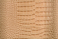 Reptile skin imitation Royalty Free Stock Photography