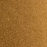 Reptile Skin Pattern Gold Royalty Free Stock Photos
