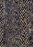 Reptile skin surface Royalty Free Stock Photography