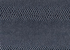 Reptile skin surface Royalty Free Stock Photo