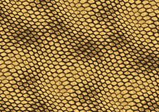 Reptile skin texture background. Realistic reptile skin illustration, decorative background texture Royalty Free Stock Photography