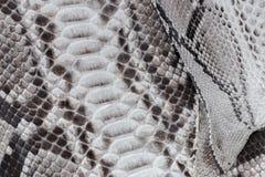 Reptile snake texture closeup, fashion zigzag snakeskin python picture. Reptile snake texture, fashion zigzag snakeskin python picture Stock Photos