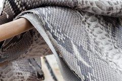 Reptile snake texture closeup, fashion zigzag snakeskin python picture. Reptile snake texture, fashion zigzag snakeskin python picture Stock Image