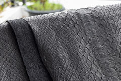Reptile snake texture closeup, fashion zigzag snakeskin python picture. Royalty Free Stock Images