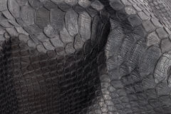 Reptile snake texture closeup, fashion zigzag snakeskin python picture. Stock Photography