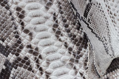 Reptile snake texture closeup, fashion zigzag snakeskin python picture. Royalty Free Stock Image