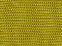 Reptile texture - lizard Royalty Free Stock Photos