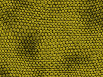 Reptile texture - rough Stock Photo