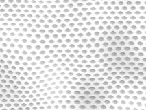 Reptile texture - shed snakeskin vector illustration