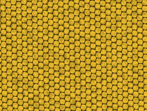Reptile texture - yellow lizard vector illustration