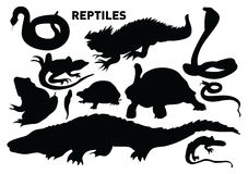 Reptiles. Vector silhouette collection of reptiles Royalty Free Stock Photo