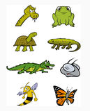 Reptiles amphibians collection. Cartoon illustration of a reptiles amphibians collection Royalty Free Stock Image