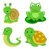 Reptiles And Amphibians Decorative Set in cartoon style isolated vector illustration Royalty Free Stock Image
